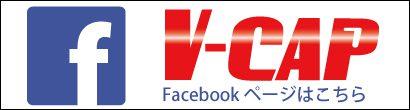 vcap_410x110_facebook